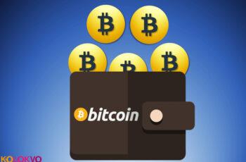 Cuál es la mejor cartera Bitcoin